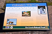 Interpretive sign, Rio Grande National Forest, Colorado