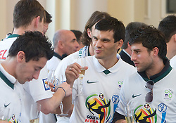 Aleksander Radosavljevic and Bojan Jokic at Reception of Slovenian National football team at president of Republic of Slovenia dr. Danilo Turk after Slovenia qualified for the FIFA World Cup South Africa 2010, in President's place , Ljubljana, Slovenia.   (Photo by Vid Ponikvar / Sportida)