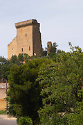 chateau ruin chateauneuf du pape rhone france