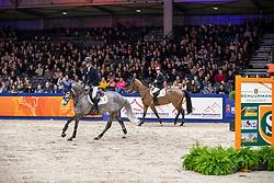 Sleiderink Sjaak, NED, Iceman B SFN<br /> KWPN hengstenkeuring - 's Hertogenbosch 2020<br /> © Hippo Foto - Dirk Caremans<br /> 30/01/2020