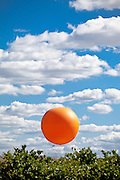 Orange County Great Park Balloon