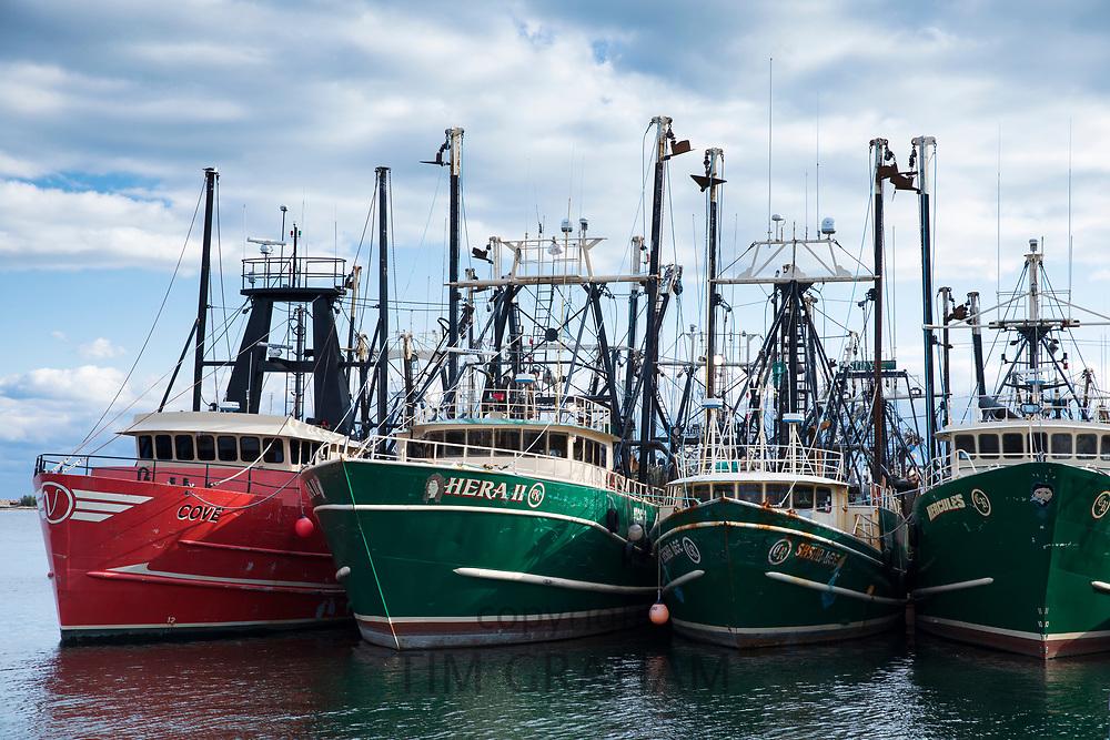 Fishing boats fleet in Massachusetts, USA