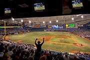 Florida / Saint Petersburg / Tropicana Field / Tampa Bay Rays / Professional Baseball Team / Domed Indoor Baseball Stadium