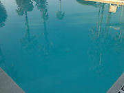 pool reflection of Palm trees and chair