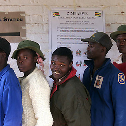 PIC BY PAUL GROVER AT THE ZIMBABWE ELECTION PIC SHOWS  FARM WORKERS ON REMARI FARM WAITING TO CAST THEIR VOTES AT THE REMARI FARM SCHOOL MOBILE POLLING STATION   PIC PAUL GROVER