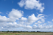 White fluffy cumulus clouds in blue sky summer weather, Suffolk, England, UK