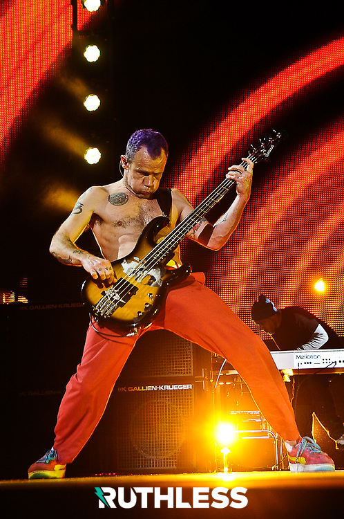 Flea of Red Hot Chilli Peppers @ The O2, Dublin