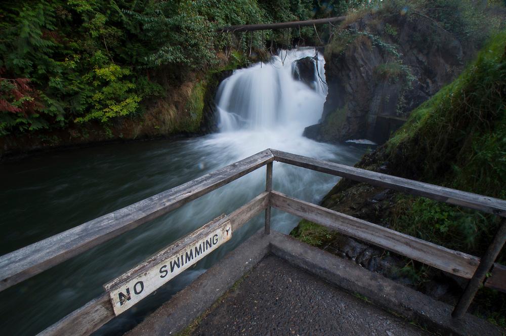 """""""No Swimming"""" Sign at Tumwater Falls, Tumwater, Washington, US"""