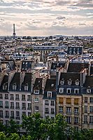Eiffel Tower & Rooftops of Paris