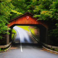 """""""Through the Covered Bridge""""<br /> <br /> A magical view of the covered bridge and forest on Pierce Stocking Scenic Drive within Sleeping Bear Dunes National Lake Shore."""