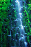 Lower Proxy Falls in Proxy Falls state park in the Three Sisters Wilderness