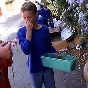 A science field trip down the alley behind their home in search of flowers in various stages of development.