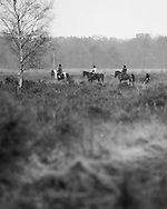 A group of riders passes a walker on  Whitmoor Common near Guildford, Surrey. Photography by Andrew Tobin/Tobinators Ltd