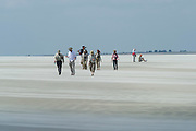 Guests on Beach<br /> Little St Simon's Island, Barrier Islands, Georgia<br /> USA