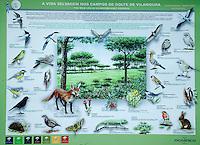 VILAMOURA - Algarve - Oceanico Victoria  Golfcourse, dieren op de baan.  COPYRIGHT KOEN SUYK