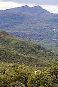 Sao Goncalo do Rio Preto_MG, Brasil...Parque Estadual do Rio Preto em Sao Goncalo do Rio Preto, Minas Gerais. ..The Rio Preto State Park in Sao Goncalo do Rio Preto, Minas Gerais. ..Foto: LEO DRUMOND / NITRO