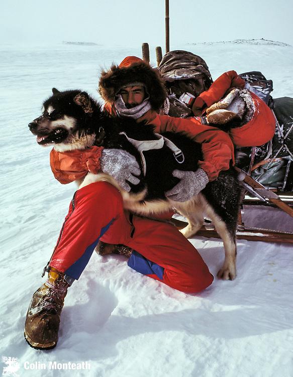 Dog handler holds husky beside sledge on slopes of Mt Erebus, Ross Island, Antarctica