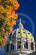 PA Capitol Complex, Harrisburg, capitol dome, fall trees