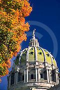 PA Capitol Complex, Harrisburg, capitol dome, fall trees