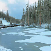 Frozen Pond - Continental Divide Summit - Yellowstone National Park