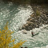 Kayaker passes rocky point on Kananaskis River, Kananskis Provincial Park, near Banff and Calgary, Alberta, Canada