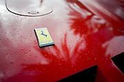 December 3-4, 2016: Ferrari Finali Mondiali, Ferrari emblem detail
