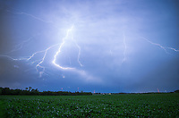 On the last day of June, 2 severe storms known as derechoes formed and moved across Illinois. After the 2nd storm passed through, it provided an amazing show of lightning. As the rain and wind ended, bolts of lightning slowly crawled across the sky, lasting up to 5 seconds. Even though it was 11pm, the field of soybeans was lit up like day.<br />
