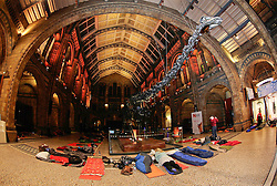 Natural History Museum, London, UK. 17/01/2014<br />