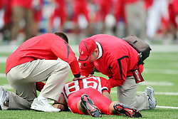 27 October 2007:  Trainers attend to Jason Horton after Horton took a hard hit while in the air receiving a pass. The pass was incomplete, Horton was removed from the field on a stretcher attached to a backboard. The Western Illinois Leathernecks beat up on the Illinois State Redbirds  27-14 at Hancock Stadium on the campus of Illinois State University in Normal Illinois.