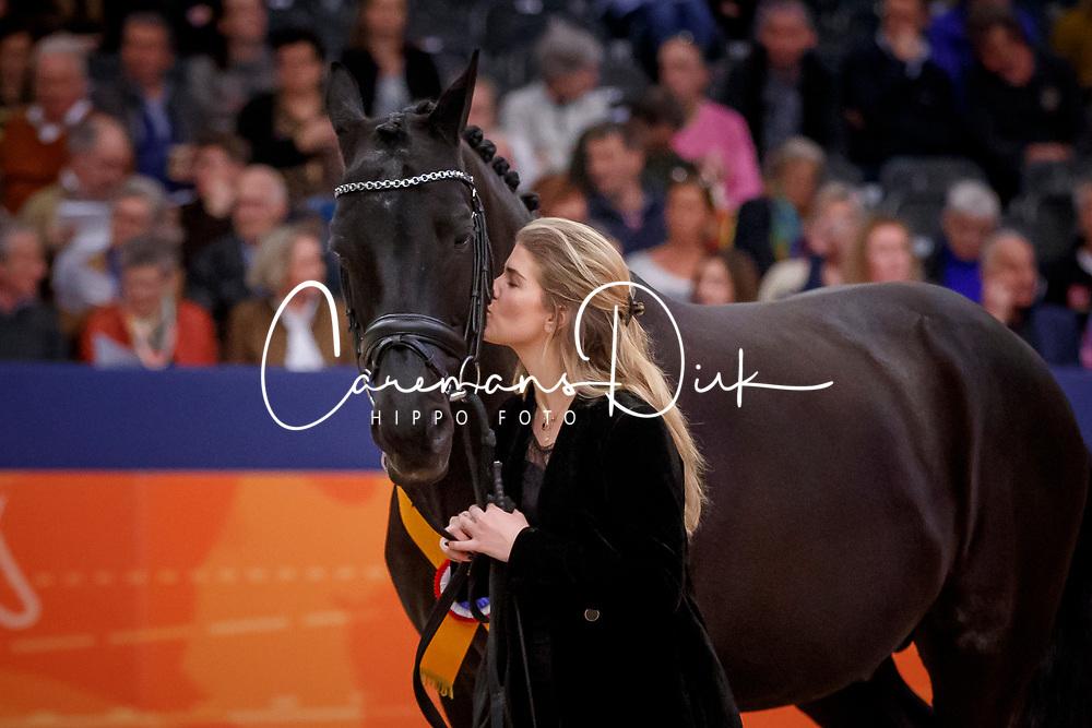Barbancon Morgan, ESP, Painted Black<br /> KWPN Stallionshow - 's Hertogenbosch 2018<br /> © Hippo Foto - Dirk Caremans<br /> 02/02/2018