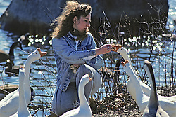 Woman Feeding Domesticated Chinese Geese