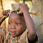 Little Djibi finds himself wearing a chicken for a hat, much to his friends' amusement. Koumbadiouma, Kolda, Senegal.