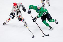 NikPem of HDD Jesenice and Gregor Kobler of HK SZ Olimpija during Ice Hockey match between HK SZ Olimpija Ljubljana and HDD Jesenice in Round #24 of Alps Hockey League, on December 22, 2018 in Hala Tivoli, Ljubljana, Slovenia. Photo by Ziga Zupan / Sportida