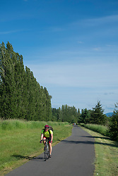United States, Washington, Redmond, Sammamish Slough Bike Trail