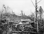 Ackroyd 00018-27. P. L. Crooks & Co. Portable saw mill. Taft, Oregon. November 14, 1946.