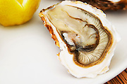 Oyster at a restaurant in Bouzigues in Languedoc Bouzigues Languedoc. Oyster on half shell with lemon. France. Europe.