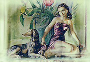 Painting of flowers and china ornament of a woman and a dog, processed to emulate wet plate technique.