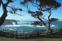 Looking at the Mendocino Headlands and the Pacific Ocean, Mendocino California
