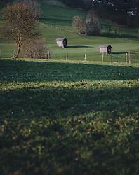 THEMENBILD - Heustadl auf einer Wiese in der Abendsonne, aufgenommen am 09. April 2020 in Piesendorf, Oesterreich // Haystadl on a meadow in the evening sun, in Piesendorf, Austria on 2020/04/09. EXPA Pictures © 2020, PhotoCredit: EXPA/Stefanie Oberhauser