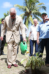 The Prince of Wales waters a plant during a visit to the Finca Marta organic farm in the Caimito district, near Havana, Cuba, as part of an historic trip which celebrates cultural ties between the UK and the Communist state.