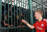 Fotball<br /> Tyskland<br /> Foto: Witters/Digitalsport<br /> NORWAY ONLY<br /> <br /> 04.01.2009<br /> <br /> Bastian Schweinsteiger mit kleinen Schimpansen im Privatzoo des Scheichs<br /> <br /> Fussball Trainingslager FC Bayern München in Dubai
