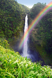 Akaka Falls with rainbow, drop 420 feet, Akaka Falls State Park, Hilo, Big Island, Hawaii (dm)