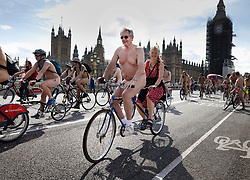 © Licensed to London News Pictures. 14/08/2021. London, UK. Cyclists cross Westminster Bridge as they take part in the World Naked Bike Ride in central London. Activists are protesting against the global dependency on oil and are calling for an end to the car culture. Photo credit: Peter Macdiarmid/LNP