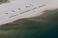 6-10-2010. BP oil washes up on a beach in Alabama .