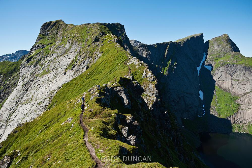 Mountain ridge of popular peak Reinebringen, Reine, Moskenesoya, Lofoten islands, Norway