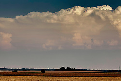 Storm clouds gather in the skies over the Illinois prairie as Corn or Maize is picked or harvested by a large farm implement known as a combine