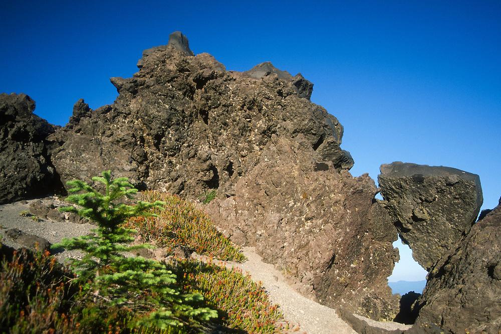 Volcanic Rocks on Ptarmigan Trail on Monitor Ridge on Way to Summit of Mt. St. Helens, Mt. St. Helens National Volcanic Monument, Washington, US