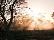 Gawler Ranges National Park, South Australia, Australia
