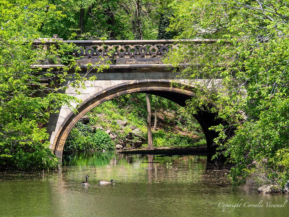 Balcony Bridge in Central Park