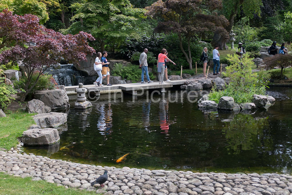 Visitors to the Kyoto Garden look into the water to see koi carp in Holland Parks' Kyoto Garden, on 28th June 2020, in London, England. The Kyoto Garden was opened in 1991 - a gift from the city of Kyoto to commemorate the long friendship between Japan and Great Britain. Today, the Kyoto Garden is a popular part of Holland Park – but it's not the only Japanese garden in this green space. In July 2012, the Fukushima Memorial Garden was officially opened. It commemorates the gratitude of the Japanese people to the British people for their support following the natural disasters that struck in March 2011.
